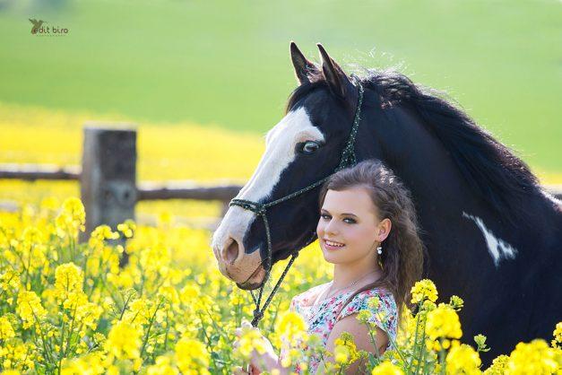 exteriér foto Chýňava, koně, American paint horse, portrét foto, příroda, volnost, western, líčení